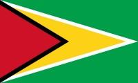 Vlajka Guyany